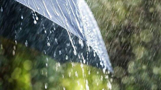 У понеділок майже по всій Україні пройдуть дощі