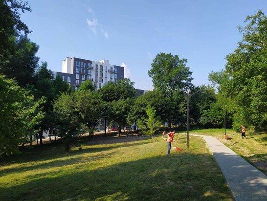 Прибирання та оновлення: у Малоголосківському парку у Львові розчищають зелену зону від сміття (відео)