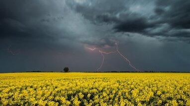 В Україні оголосили штормове попередження: західні регіони накриють дощі та град